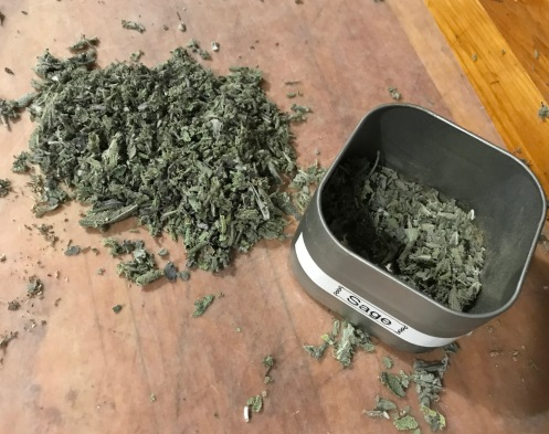 sage in canister